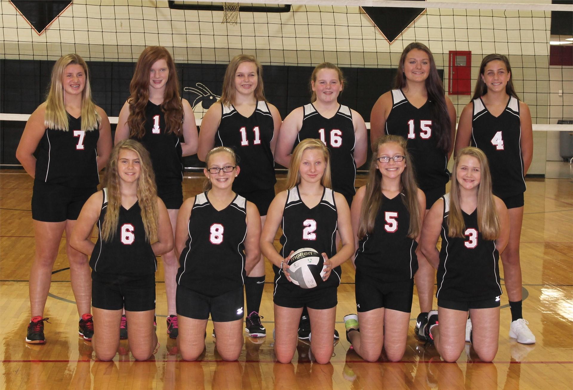2016-2017  7th Grade Volleyball Team