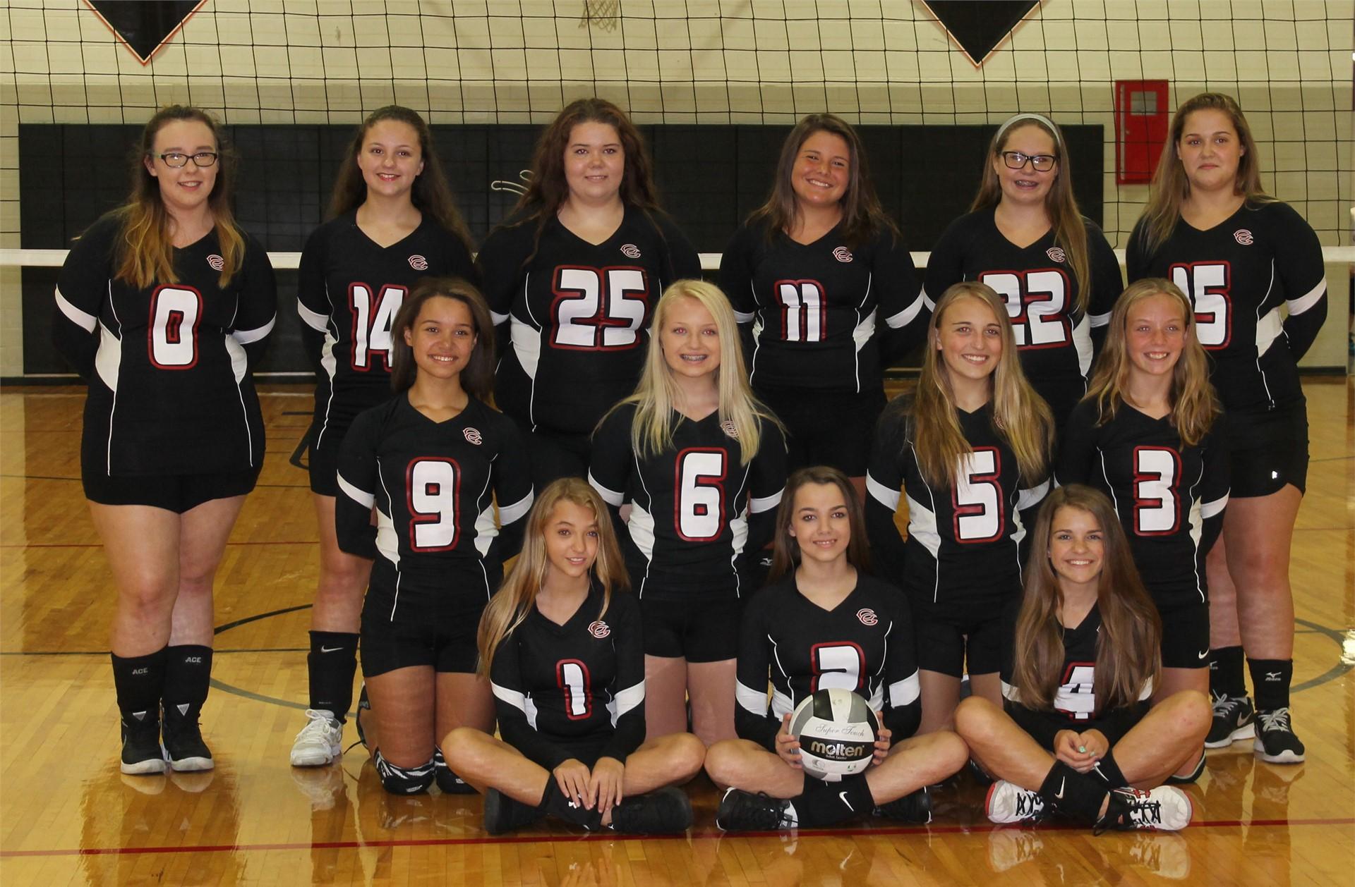 2016-2017  8th Grade Volleyball Team